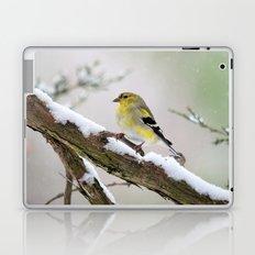 Balancing Act (American Goldfinch) Laptop & iPad Skin