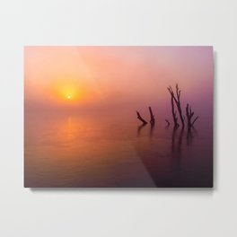 Ltd Edition:beautiful nature scene Metal Print