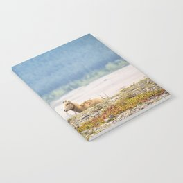 Little Boy Blue Notebook
