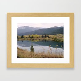 Reflections on Nature Framed Art Print