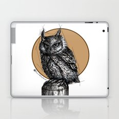 Owl sun Laptop & iPad Skin