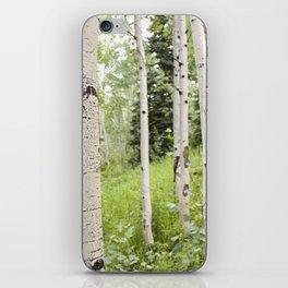 Silverthorne iPhone Skin