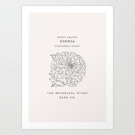 Botanical seed packet illustration - Zinnia Art Print
