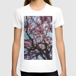 flower and light  - Cherry tree 4 T-shirt