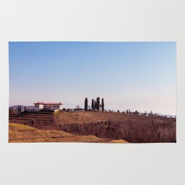 Winter morning in the vineyards of Collio, Italy Rug