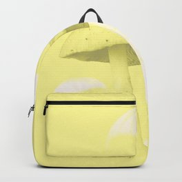A pic of mush Backpack