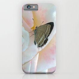 Butterfly on Pink Rose iPhone Case