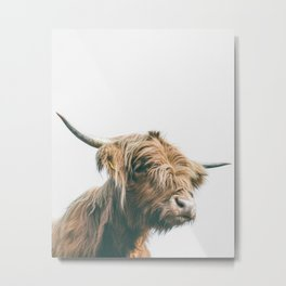 Majestic Highland cow portrait Metal Print