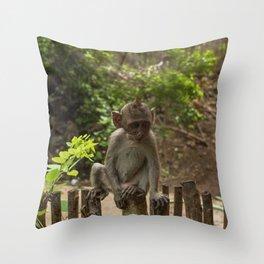 Wise baby monkey Throw Pillow