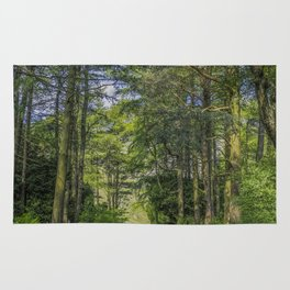 Road To Happiness Rug