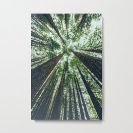 PMA Metal Print