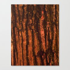 Textures - Wood Canvas Print
