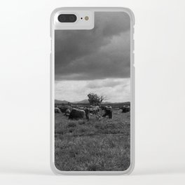 Plain of Jars, Laos Clear iPhone Case