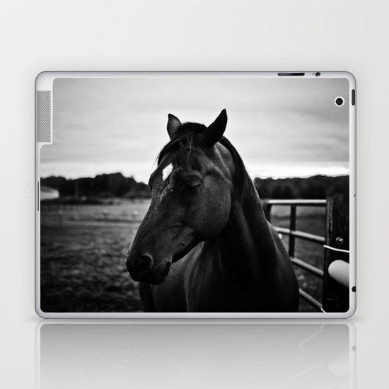 The Secret of the Horse Laptop & iPad Skin