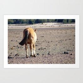 brown horse Art Print