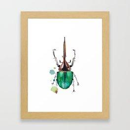 Beetle Framed Art Print