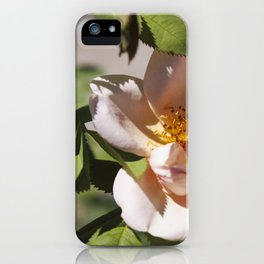 Full Blown (Summer Rose) iPhone Case