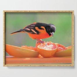 Orange Juice for Breakfast (Baltimore Oriole) Serving Tray