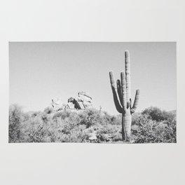 DESERT VII / Scottsdale, Arizona Rug