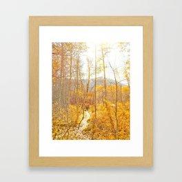 Sun Valley Framed Art Print