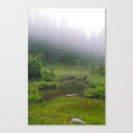 Pond of the False Prophet Canvas Print