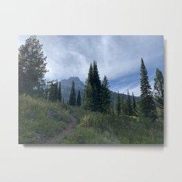 Delta Lake Hike Metal Print