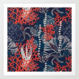 Corals and Starfish Art Print