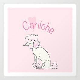 Caniche Art Print
