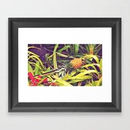Piña Framed Art Print