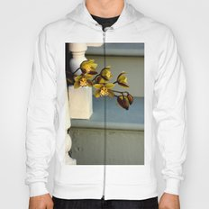 Overstepping One's Bounds Hoody