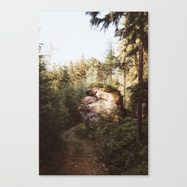 Forest trail - Landscape and Nature Photography Canvas Print