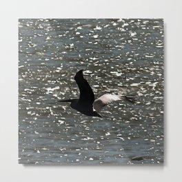 Pelican Flying Over Shimmering Lake Bafa Metal Print