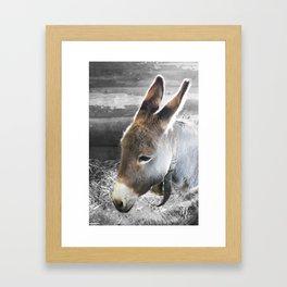 L'âne Framed Art Print