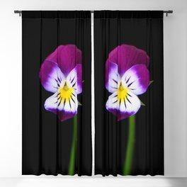 Violet Flower Blackout Curtain