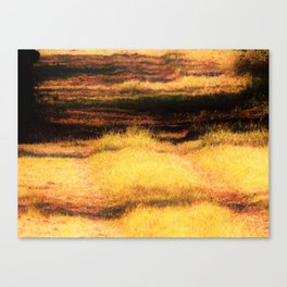 Fields Of... Canvas Print