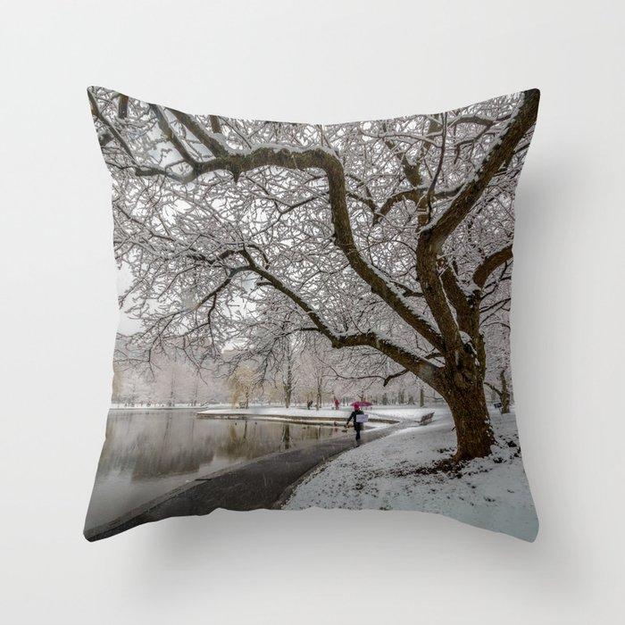 Boston Garden - winter walk Throw Pillow