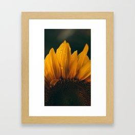 flower photography by eberhard grossgasteiger Framed Art Print
