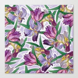 the iris Canvas Print