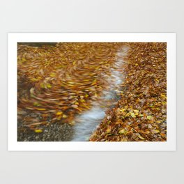 Abstract of autumnal leaves in the waves on Buttermere. Lake District, UK. Art Print