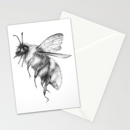 Bumblebee | Day 148 /365 Stationery Cards