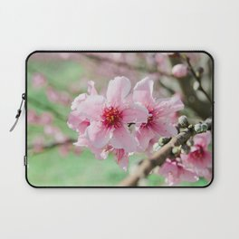 Peach Blossoms 15 Laptop Sleeve