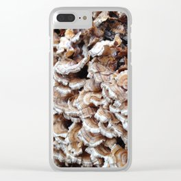 Fungus Finds Clear iPhone Case