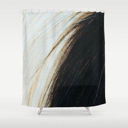 Gypsy Horse Mane rustic decor Shower Curtain