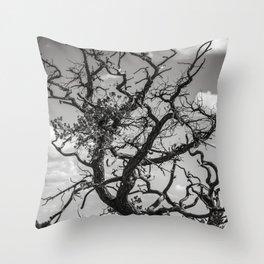 Ancient Tree, Survivor, Alive Throw Pillow