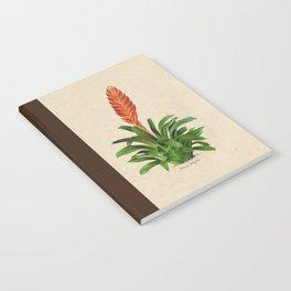 Vriesea fulgida old plate Notebook