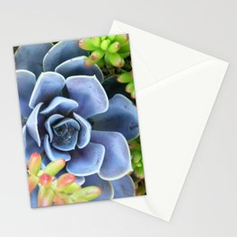 Succulent Bunch Stationery Cards