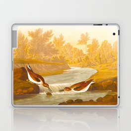Little Sandpiper Bird Laptop & iPad Skin