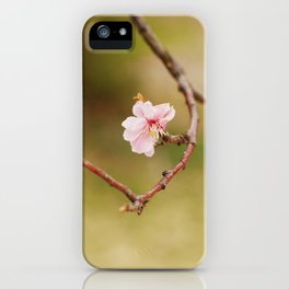 Spring Changdeokgung palace, Seoul, Korea iPhone Case
