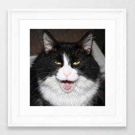 Growling or Yawning? Framed Art Print