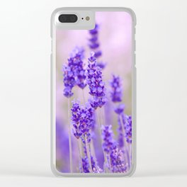 Lavender, lavandula flowers Clear iPhone Case